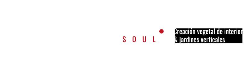 Flower Soul - Creación Vegetal