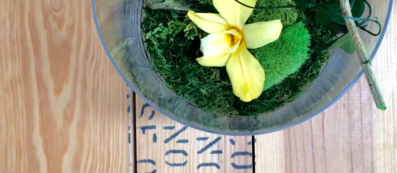 Terrario vegetal Flower Soul