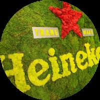 Logotipos Vegetales